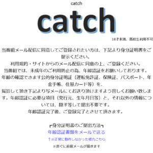Screenshot_2021-03-19 catch.png